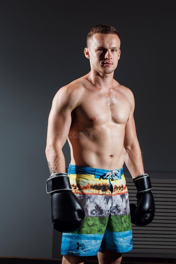 Stående av boxaren i boxninghandskar på grå bakgrund arkivfoto