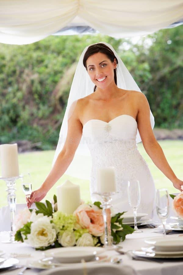 Stående av bruden i stort festtält på mottagandet fotografering för bildbyråer