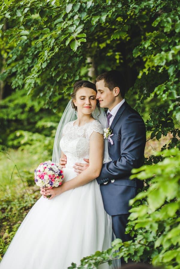 Stående av bruden och brudgummen på skogen royaltyfri foto