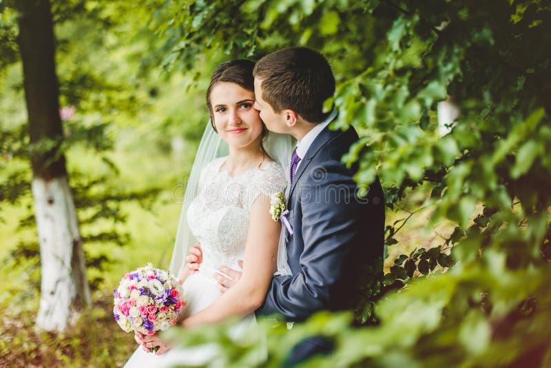 Stående av bruden och brudgummen på skogen arkivfoton