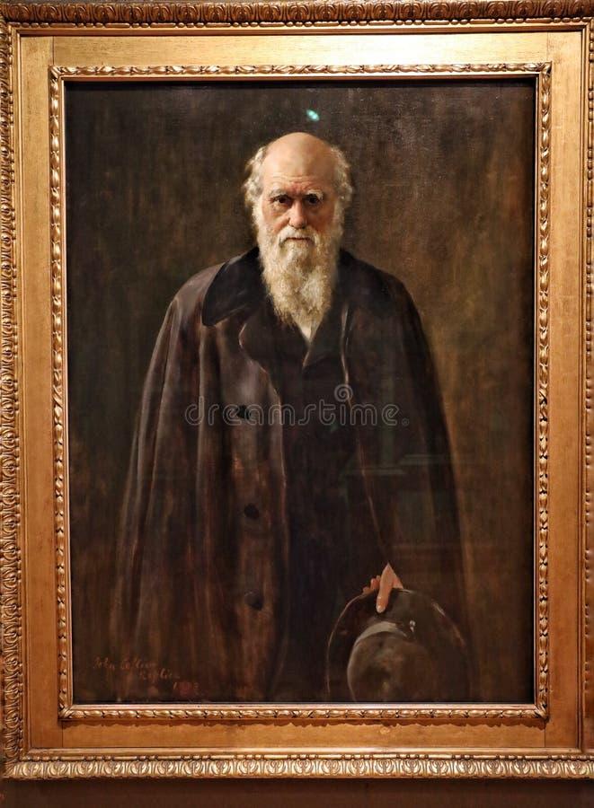 Stående av Charles Robert Darwin royaltyfria bilder