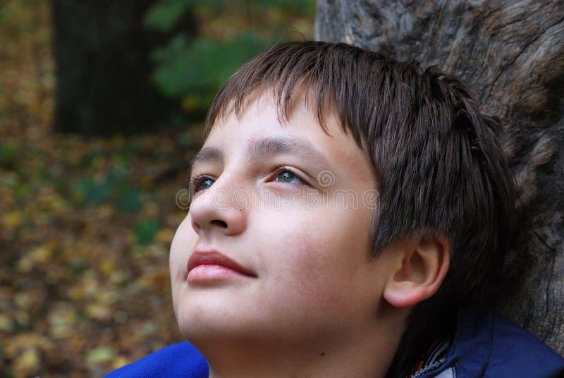 Stående av den drömlika tonårs- pojken utomhus arkivfoto