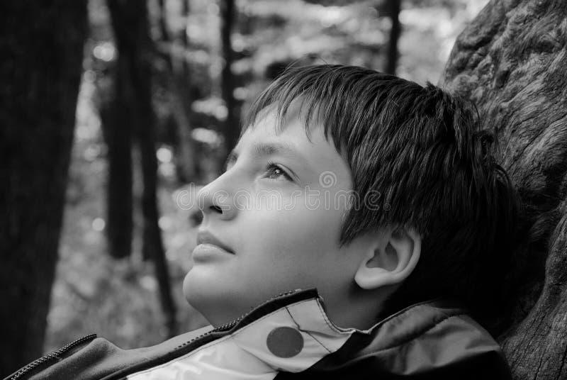 Stående av den drömlika tonårs- pojken utomhus arkivfoton