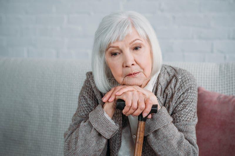 stående av den fundersamma gråa hårdamen med sammanträde för gå pinne på soffan royaltyfri foto