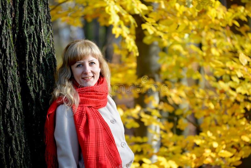 Stående av den glade unga kvinnan med en röd halsduk mot bakgrunden av ett höstträd royaltyfri fotografi