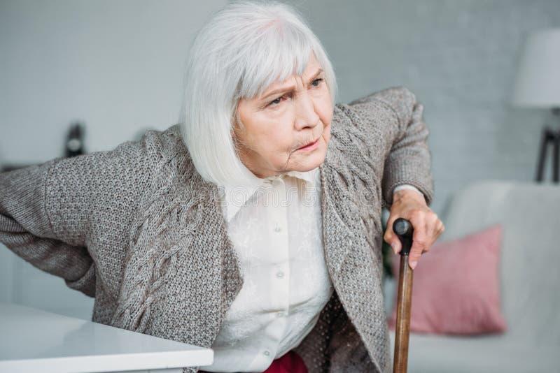 stående av den gråa hårdamen med tillbaka knip och trägå pinnen som sitter på stol fotografering för bildbyråer