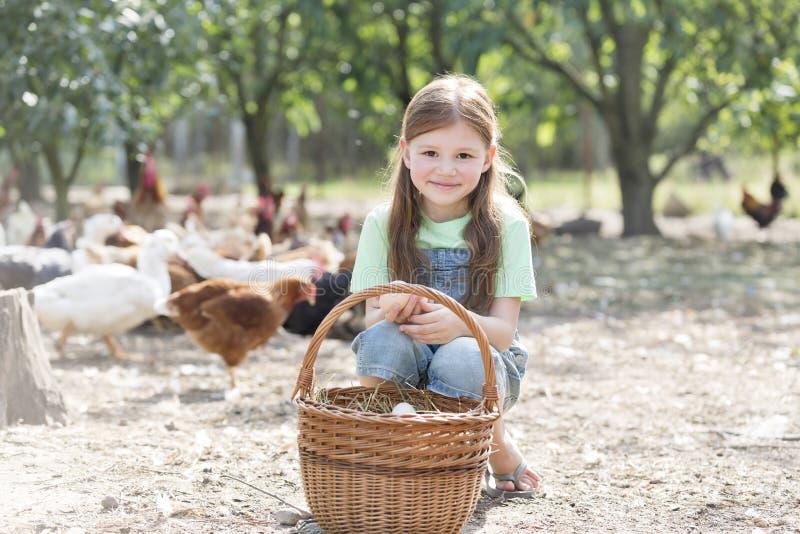 Stående av den gulliga flickan med ägg i korg mot hönor på lantgården arkivfoto