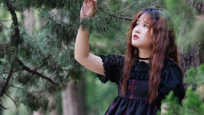 Stående av den härliga asiatiska kvinnan som poserar i sommarskogen, kinesisk flicka i den svarta klänningen för tappning som ser fotografering för bildbyråer