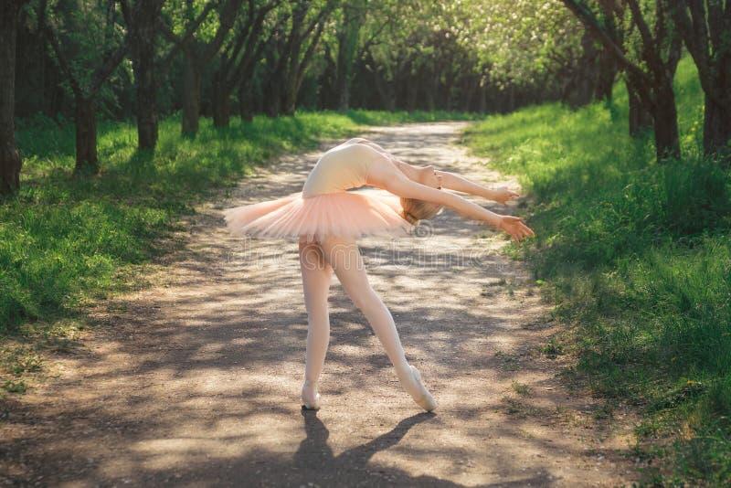 Stående av den härliga ballerina med romantiker- och anbudsinnesrörelse royaltyfri foto