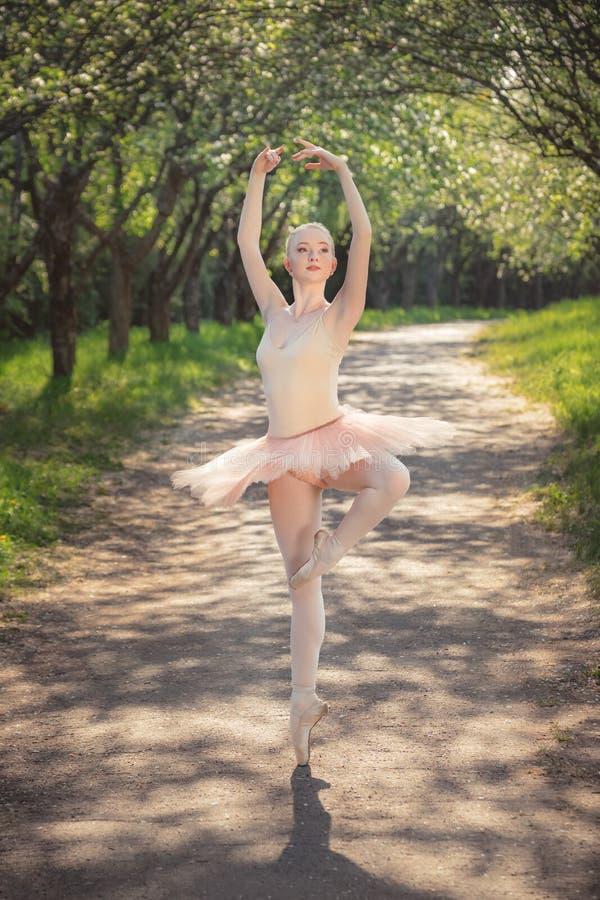 Stående av den härliga ballerina med romantiker- och anbudsinnesrörelse arkivbild