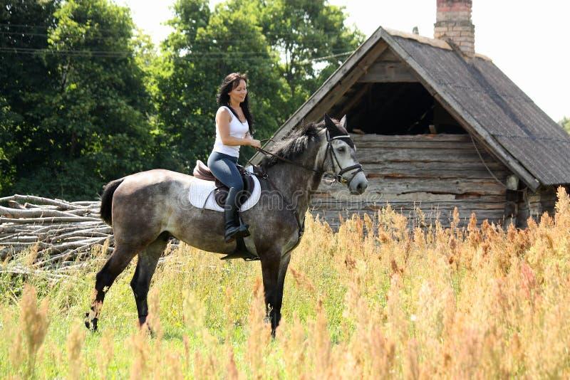 Stående av den härliga kvinnan på häst nära ladugården fotografering för bildbyråer