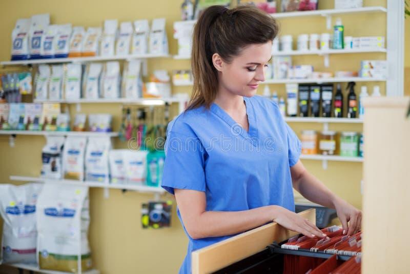 Stående av den härliga sjuksköterskan med mappen på veterinärkliniken fotografering för bildbyråer