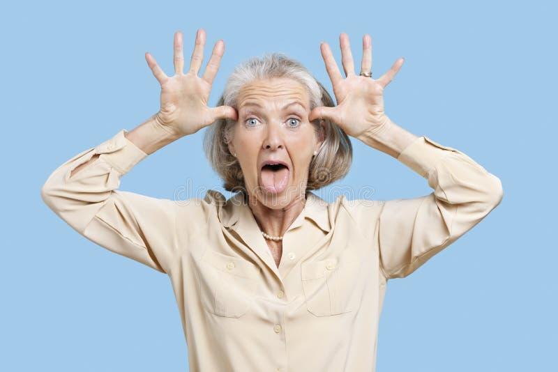 Stående av den höga kvinnan som gör roliga framsidor med händer på huvudet mot blå bakgrund royaltyfri fotografi