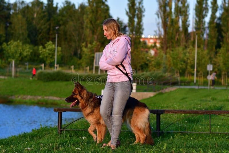 Stående av den lyckliga gladlynta härliga unga kvinnan med den tyska herden utomhus royaltyfri fotografi