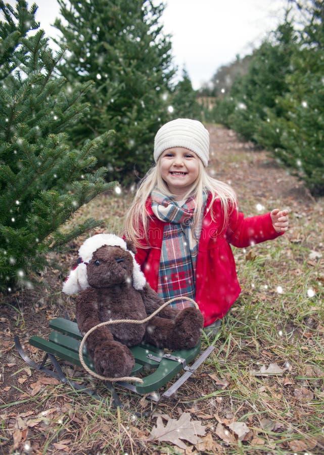 Stående av den lyckliga lilla flickan som sitter med nallebjörnen på släden arkivbild