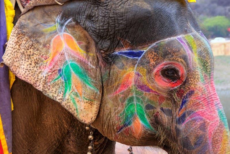Stående av den målade elefanten som upp till går Amber Fort nära Jaipu royaltyfri foto