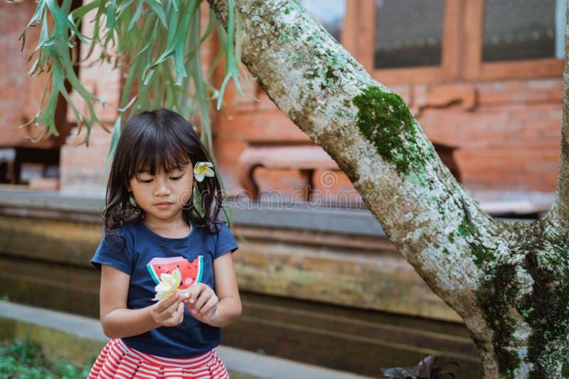 Stående av den nätta lilla flickan när att ta en frangipaniblomma royaltyfria bilder
