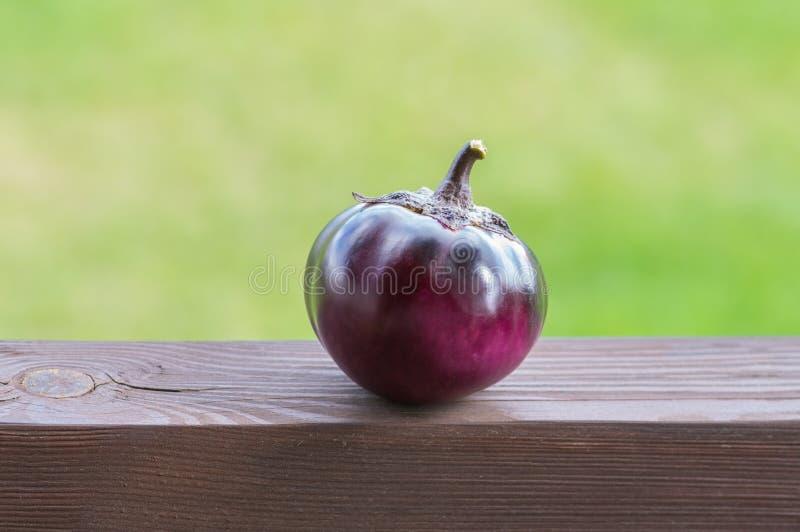 Stående av den organiska fruktaubergineet arkivbilder