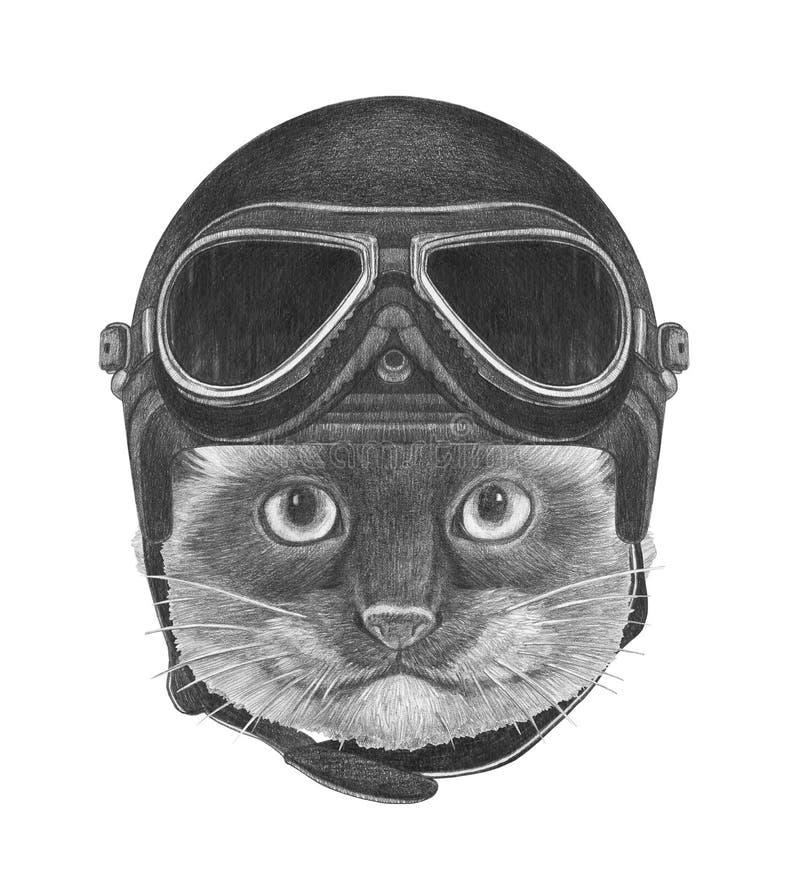 Stående av den Siamese katten med tappninghjälmen stock illustrationer