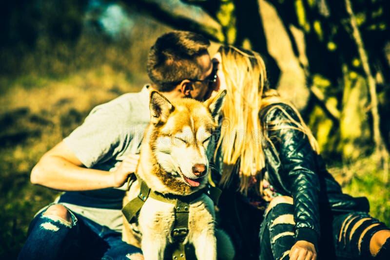 Stående av den skrovliga hunden som är utomhus- med kyssande par bakom royaltyfri foto