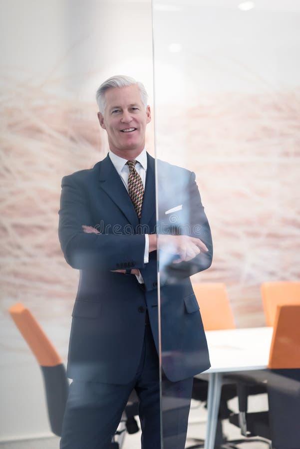 Stående av den stiliga höga affärsmannen på det moderna kontoret royaltyfri foto