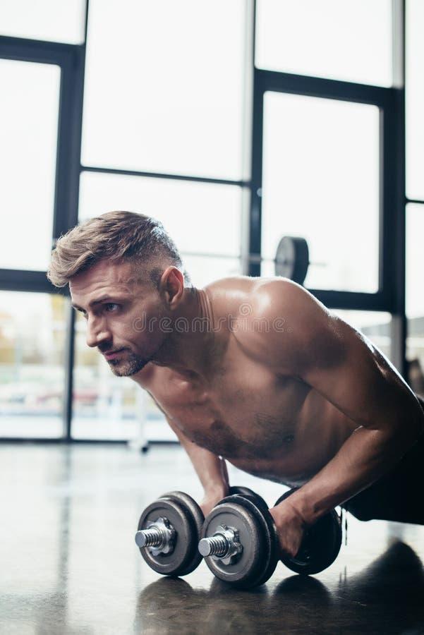 stående av den stiliga shirtless idrottsmannen som gör plankan på hantlar royaltyfri bild