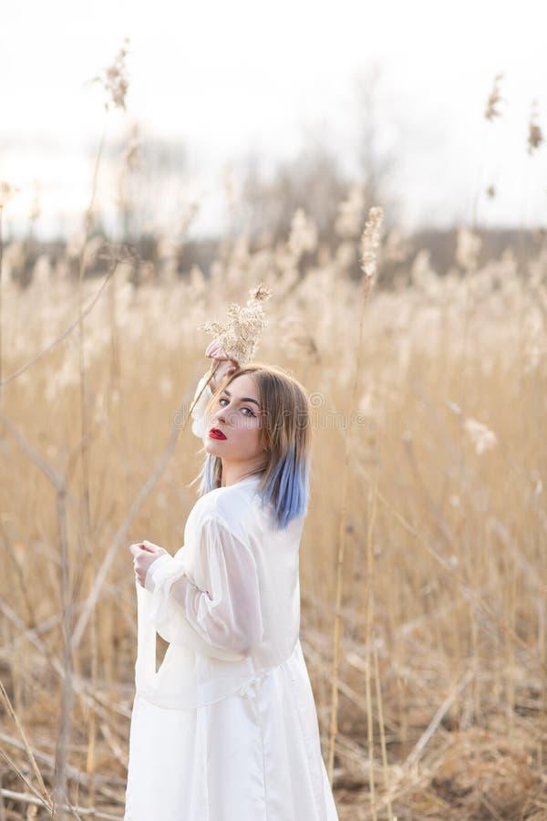 Stående av den unga härliga flickan i den vita klänningen i vetefältet, gå som är bekymmerslöst Tycka om den härliga soliga dagen arkivbilder