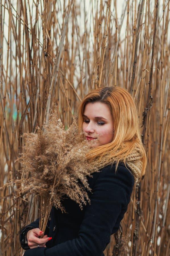 Stående av den unga härliga kvinnan i höstlag fotografering för bildbyråer