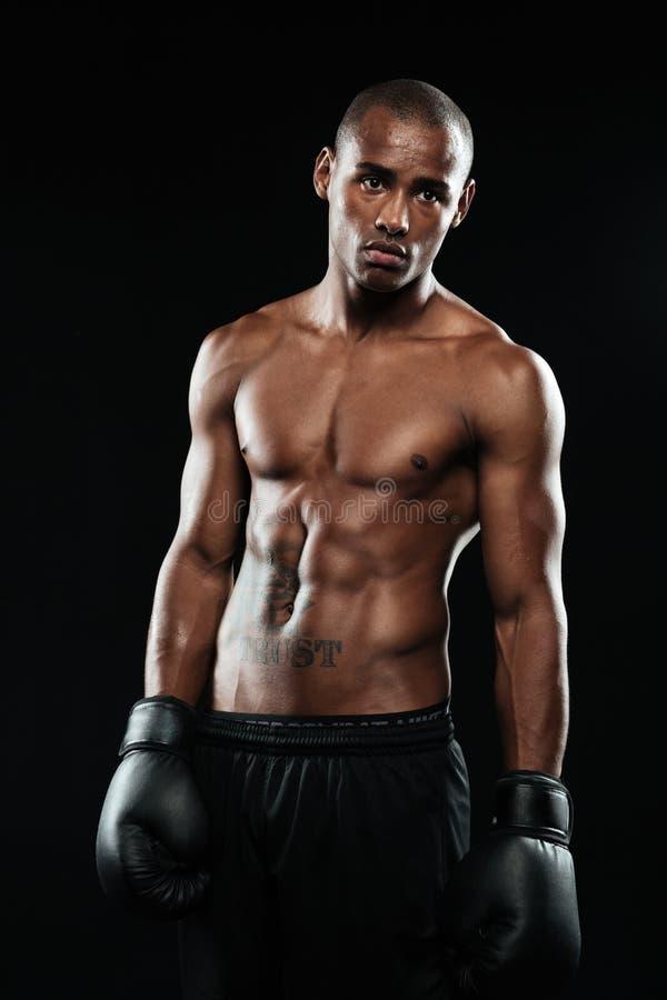 Stående av den unga stiliga afroamerican boxaren i handskar royaltyfri foto