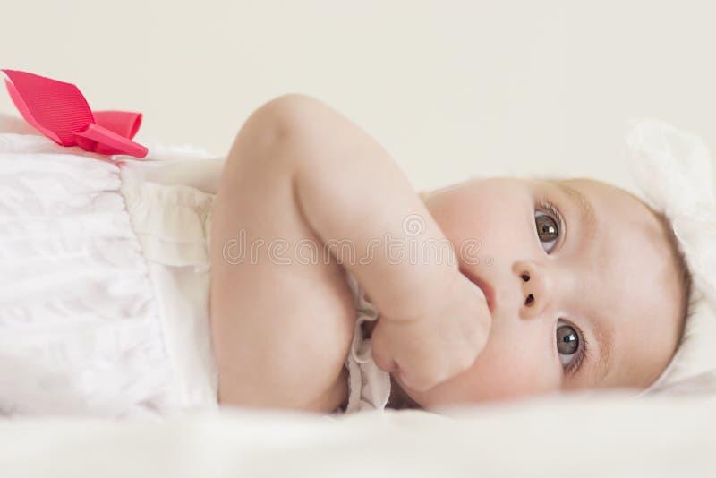 Stående av det gulliga begynnande Caucasian kvinnliga barnet Mot vit arkivbild