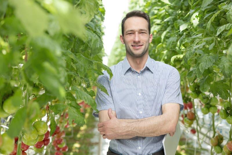 Stående av det säkra arbetsledareanseendet under växter i växthus royaltyfria foton