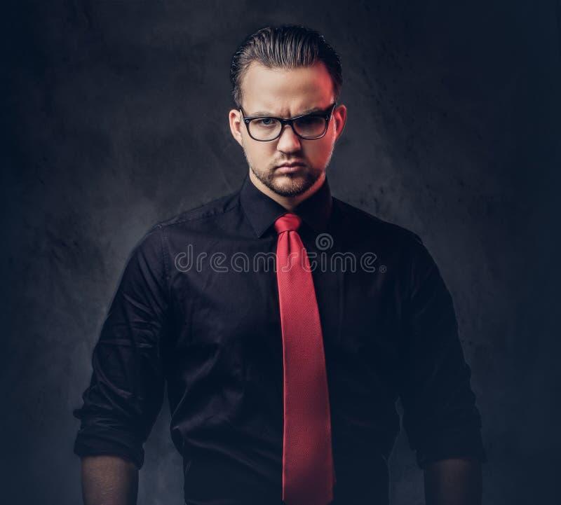 Stående av en briljant rackare i en svart skjorta med ett rött band royaltyfri fotografi