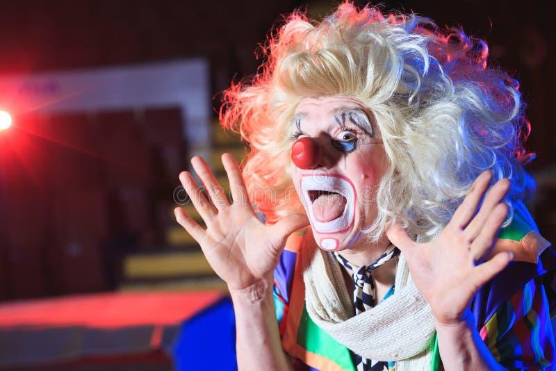 Stående av en clown i cirkusarenan fotografering för bildbyråer