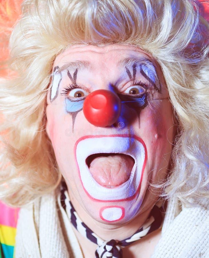 Stående av en clown i cirkusarenan royaltyfri foto