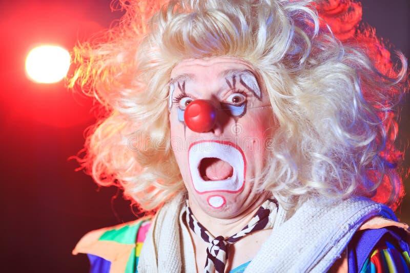 Stående av en clown i cirkusarenan arkivbild