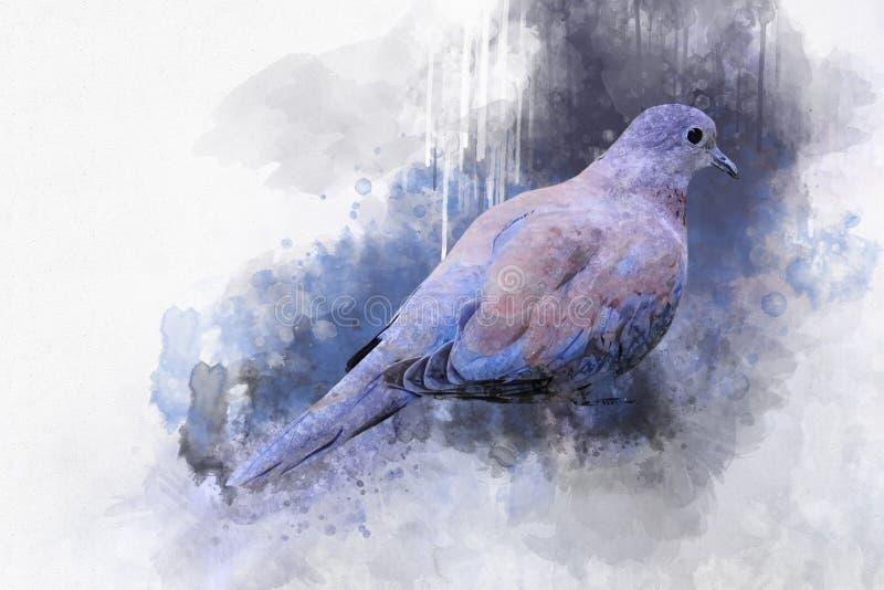 Stående av en duvafågel, vattenfärgmålning Fågelillustration arkivfoton