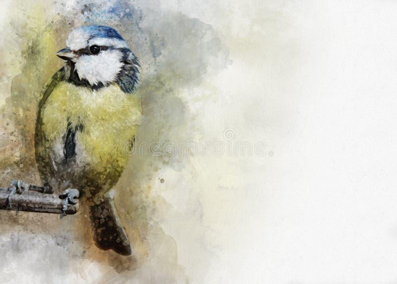 Stående av en fågel för blå mes, vattenfärgmålning Fågelillustration royaltyfri illustrationer