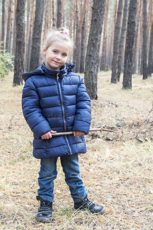 Stående av en flicka i pinjeskog arkivbild