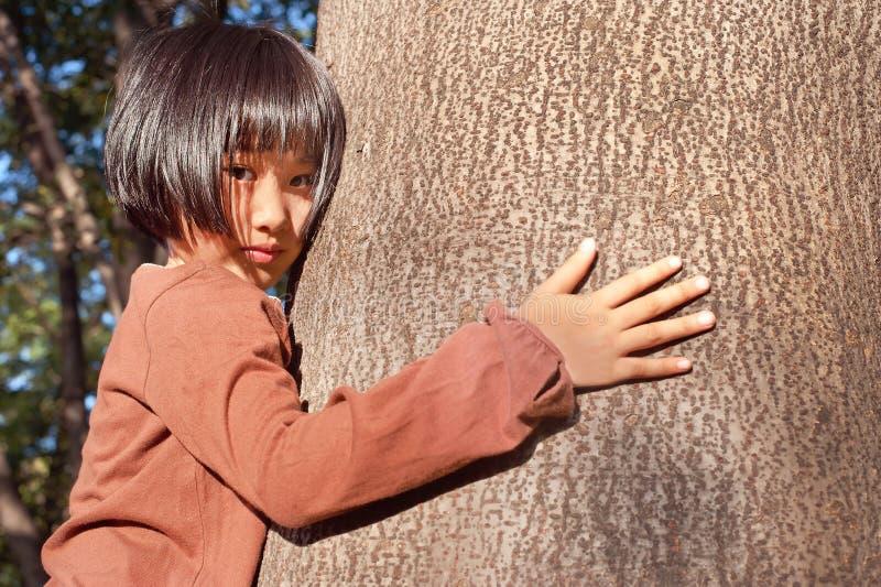 Stående av en gullig asiatisk liten flicka som kramar det stora trädet royaltyfria bilder