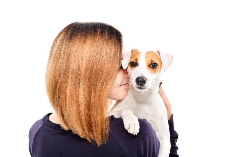 Stående av en gullig hund Jack Russell Terrier på skuldran av dess ägare fotografering för bildbyråer