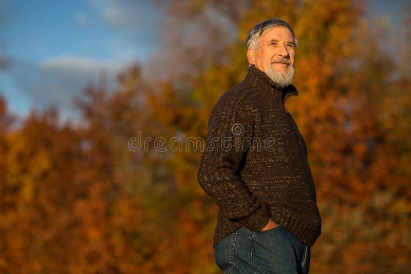 Stående av en hög man utomhus som går i en parkera royaltyfria bilder
