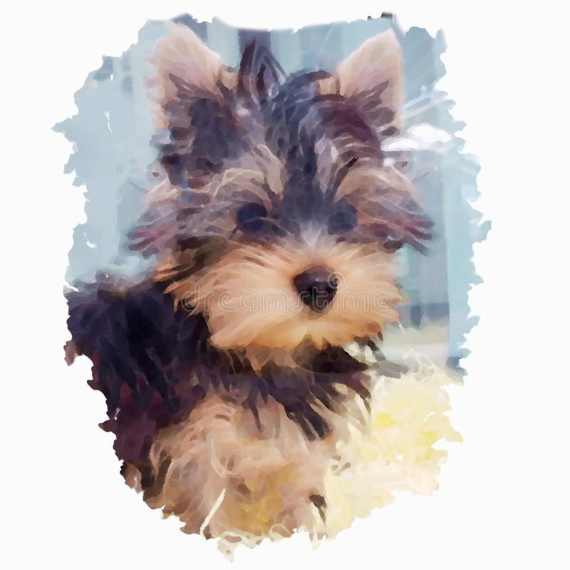 Stående av en hundavel Yorkshire i stilen av vattenfärgmålning royaltyfri fotografi