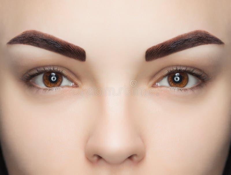 Stående av en kvinna med härliga brunn-ansade ögonbryn, når att ha färgat en skönhetsalong arkivbilder