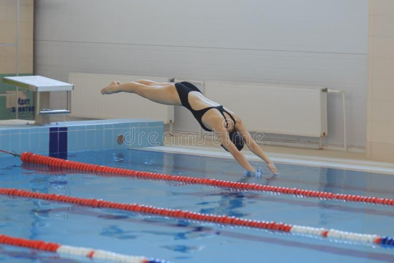 Stående av en kvinnlig simmare, den banhoppning och dykning in i simbassäng för inomhus sport sportig kvinna arkivfoton