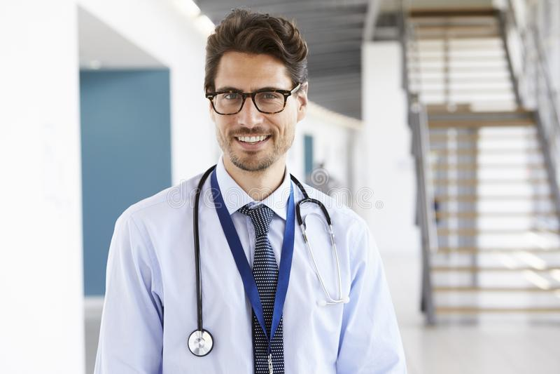 Stående av en le manlig doktor med stetoskopet royaltyfri foto