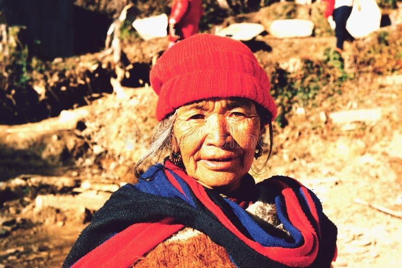 Stående av en lycklig nepalesisk kvinna i Pokhara, Nepa fotografering för bildbyråer