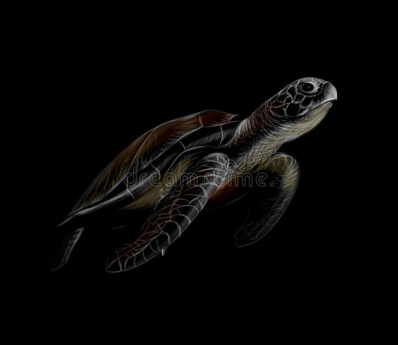 Stående av en stor havssköldpadda på en svart bakgrund royaltyfri illustrationer