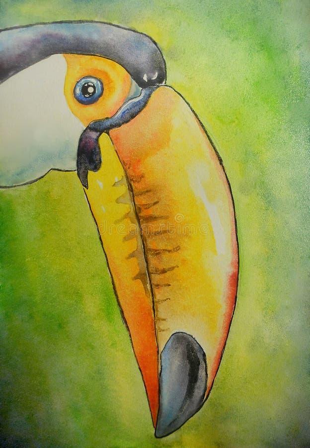Stående av en tukanfågel royaltyfri illustrationer