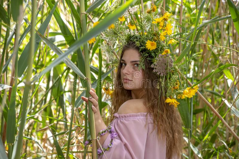 Stående av en ung kvinna i en krans av blommor som står mellan de gröna stjälk av vasser royaltyfria foton