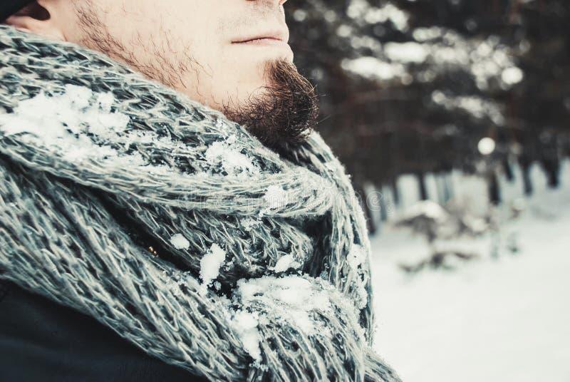 Stående av en ung stilig man med ett skägg livsstil för liggande för härliga flickahandskar grön över scarfsnowvinter arkivfoto
